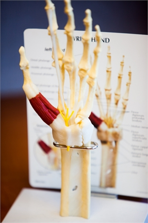 Image related to Patient Education Hand Shoulder and Wrist Conditions Houston